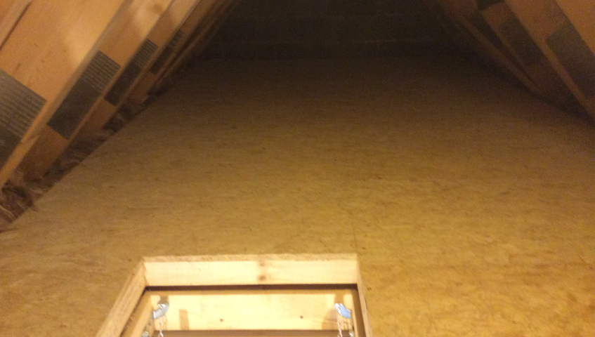 attic-floor-normal-3